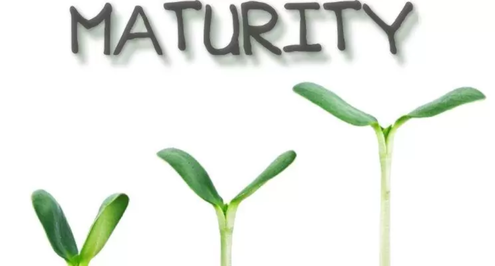 The Means to Maturity Image